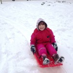 Sophie on a sledge