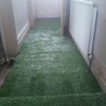 I Turfed the hall